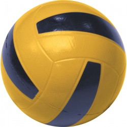 Skin-Coated Volleyball