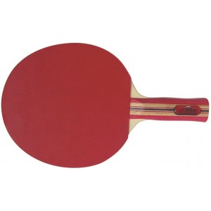 Table Tennis Racket Megaform Silver