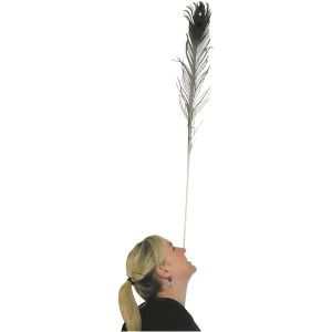 Spordas Juggling Peacock Feathers Set of 12